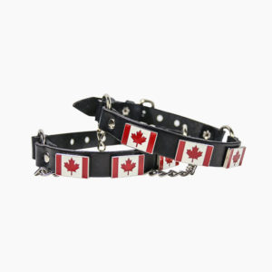 canadaBootstrap